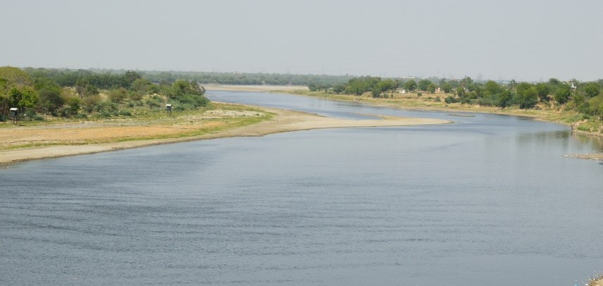 Why The Sweet Fruit Of Yamuna Floodplains Is Better Avoided