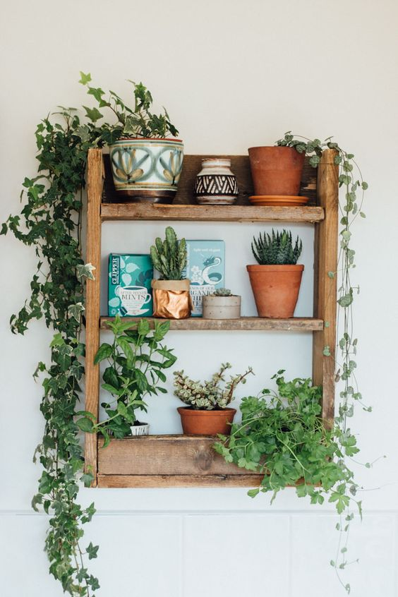 Five Ways To Decorate House Interiors With Plants Earth Day