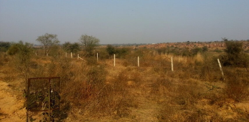#RealtyNewsRoundUp: SC Orders Demolition Of Illegal Constructions In Forest Area Of Aravalli Hills
