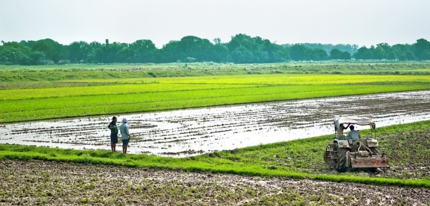 what is agriculture income what constitutes agriculture income