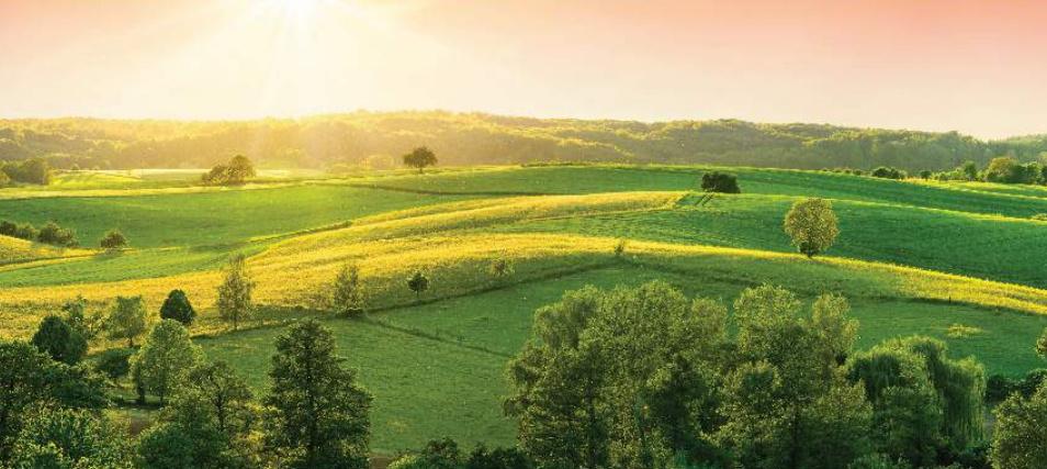 In Focus: Seasons By Century Real Estate